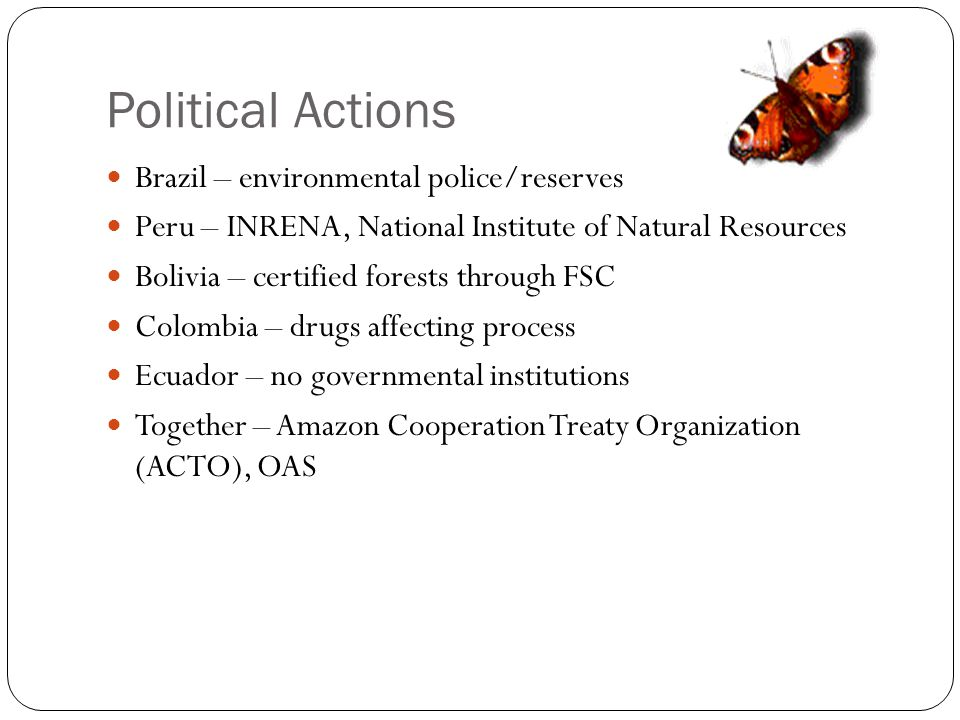 Political Actions Brazil – environmental police/reserves Peru – INRENA, National Institute of Natural Resources Bolivia – certified forests through FS