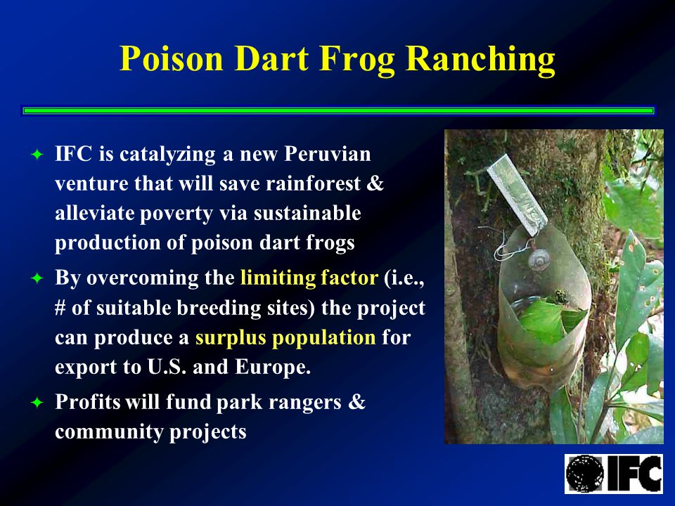 Poison Dart Frog Ranching  IFC is catalyzing a new Peruvian venture that will save rainforest & alleviate poverty via sustainable production of poison dart frogs  By overcoming the limiting factor (i.e., # of suitable breeding sites) the project can produce a surplus population for export to U.S.