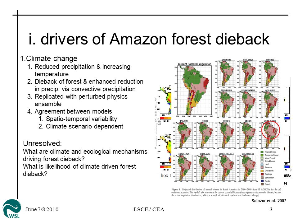 June 7/8 2010LSCE / CEA3 i. drivers of Amazon forest dieback Cox et al.