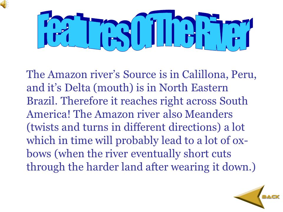 o The Amazon river is home to piranha a type of carnivorous fish.