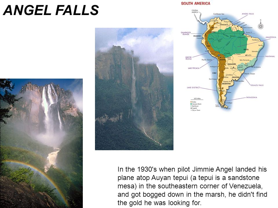 In the 1930 s when pilot Jimmie Angel landed his plane atop Auyan tepui (a tepui is a sandstone mesa) in the southeastern corner of Venezuela, and got bogged down in the marsh, he didn t find the gold he was looking for.