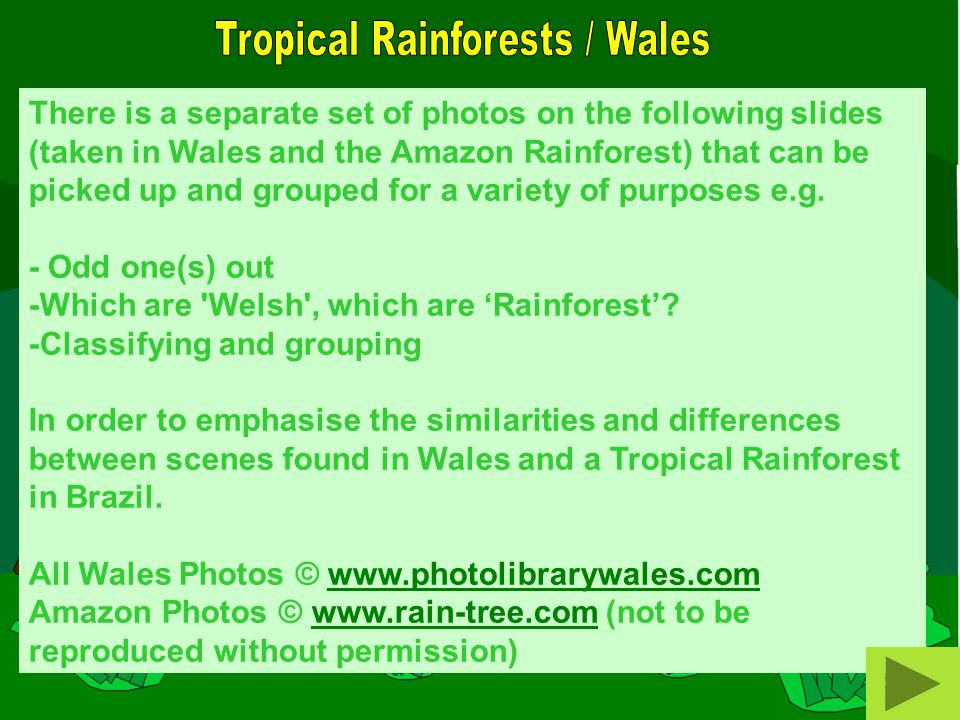 There is a separate set of photos on the following slides (taken in Wales and the Amazon Rainforest) that can be picked up and grouped for a variety of purposes e.g.