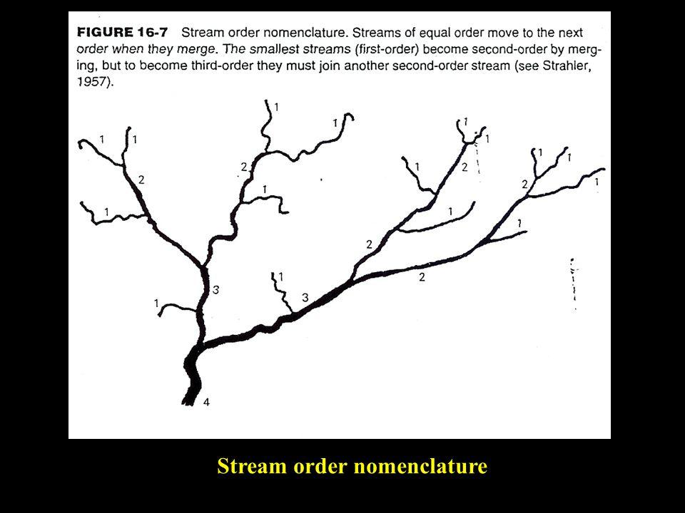 Stream order nomenclature