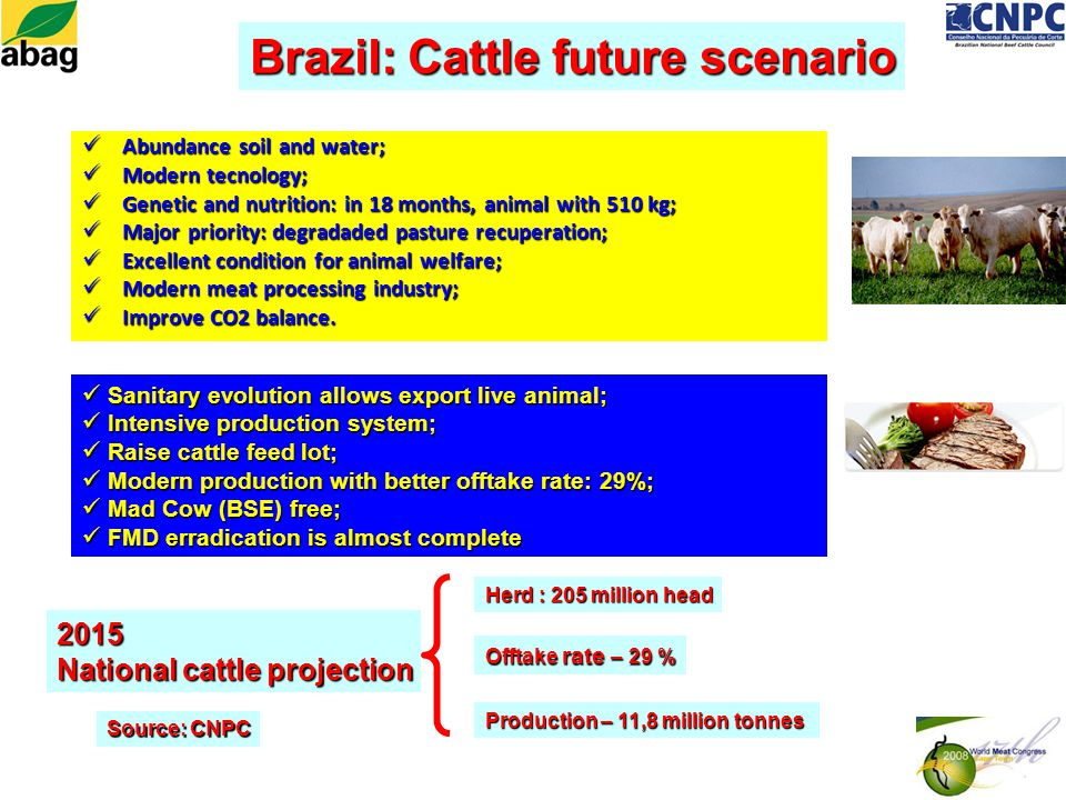 Abundance soil and water; Abundance soil and water; Modern tecnology; Modern tecnology; Genetic and nutrition: in 18 months, animal with 510 kg; Genetic and nutrition: in 18 months, animal with 510 kg; Major priority: degradaded pasture recuperation; Major priority: degradaded pasture recuperation; Excellent condition for animal welfare; Excellent condition for animal welfare; Modern meat processing industry; Modern meat processing industry; Improve CO2 balance.