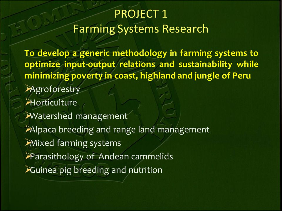 PROJECT 1 Farming Systems Research To develop a generic methodology in farming systems to optimize input-output relations and sustainability while minimizing poverty in coast, highland and jungle of Peru  Agroforestry  Horticulture  Watershed management  Alpaca breeding and range land management  Mixed farming systems  Parasithology of Andean cammelids  Guinea pig breeding and nutrition
