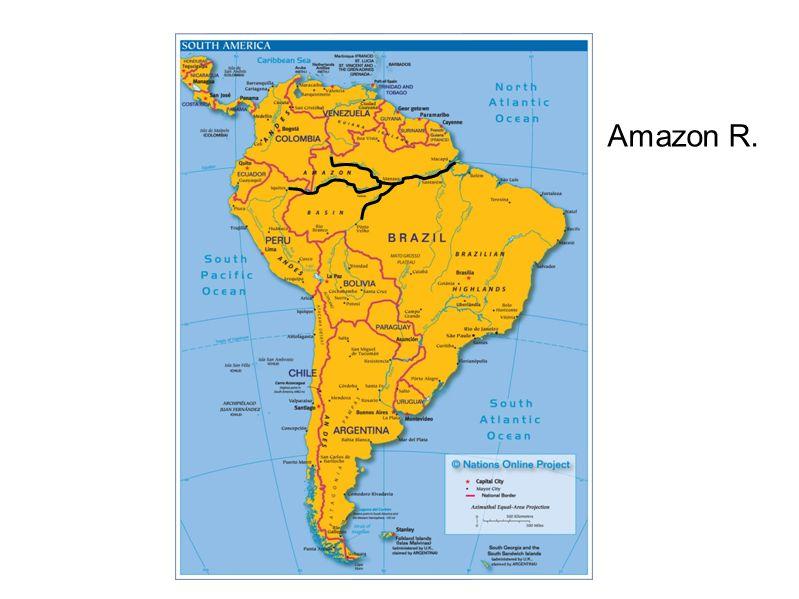 Amazon R.