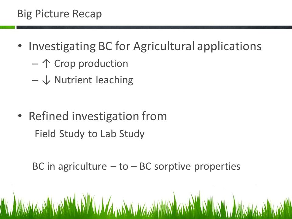 Big Picture Recap Investigating BC for Agricultural applications – ↑ Crop production – ↓ Nutrient leaching Refined investigation from Field Study to Lab Study BC in agriculture – to – BC sorptive properties