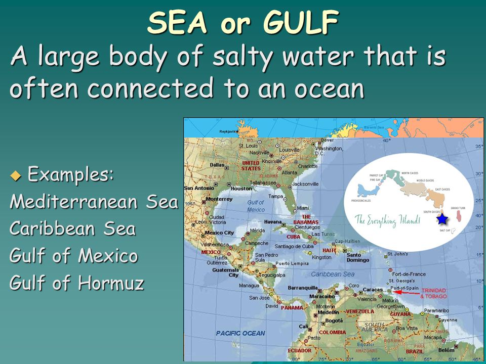 SEA or GULF A large body of salty water that is often connected to an ocean  Examples: Mediterranean Sea Caribbean Sea Gulf of Mexico Gulf of Hormuz