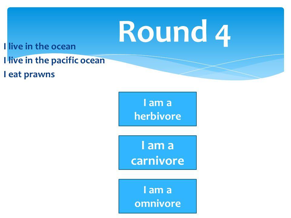 I live in the ocean I live in the pacific ocean I eat prawns Round 4 I am a herbivore I am a carnivore I am a omnivore