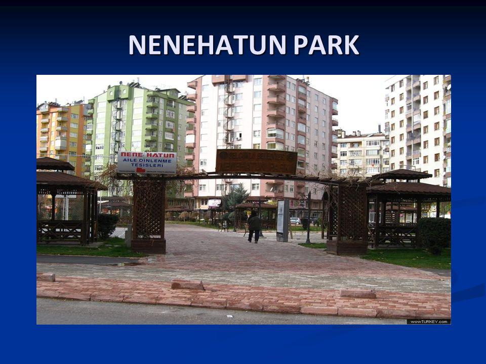 NENEHATUN PARK