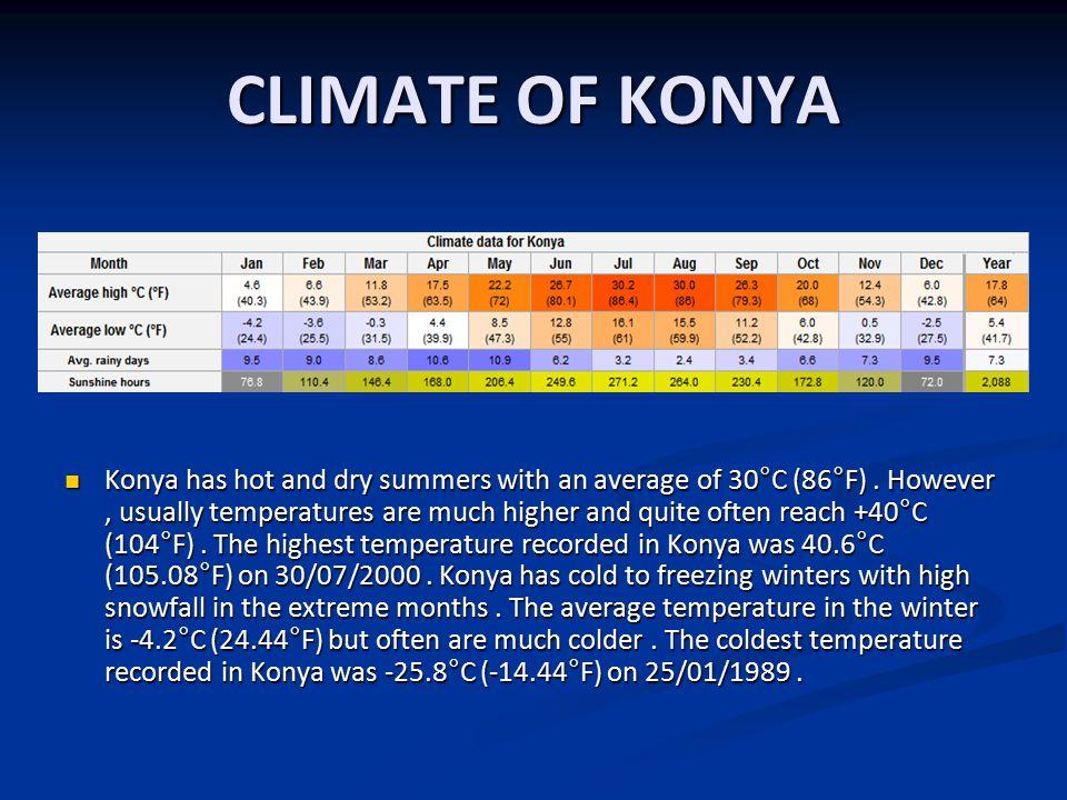 THE SOCIAL LIFE IN KONYA