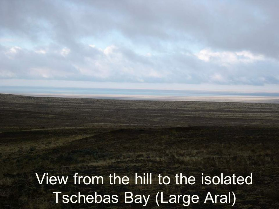 View from the hill to the isolated Tschebas Bay (Large Aral)