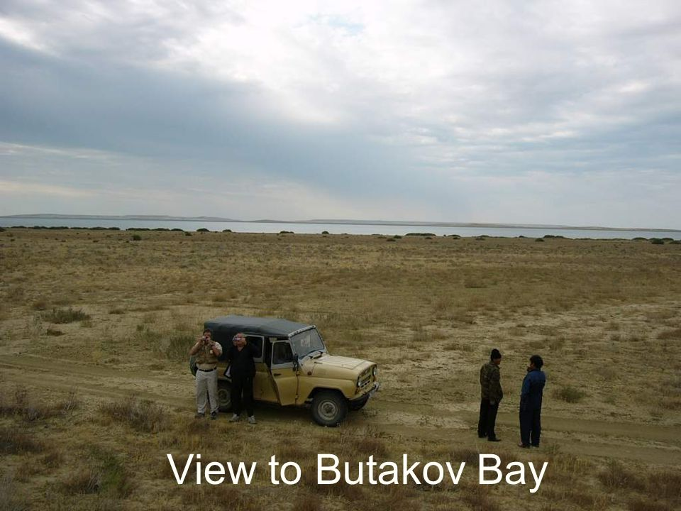 View to Butakov Bay