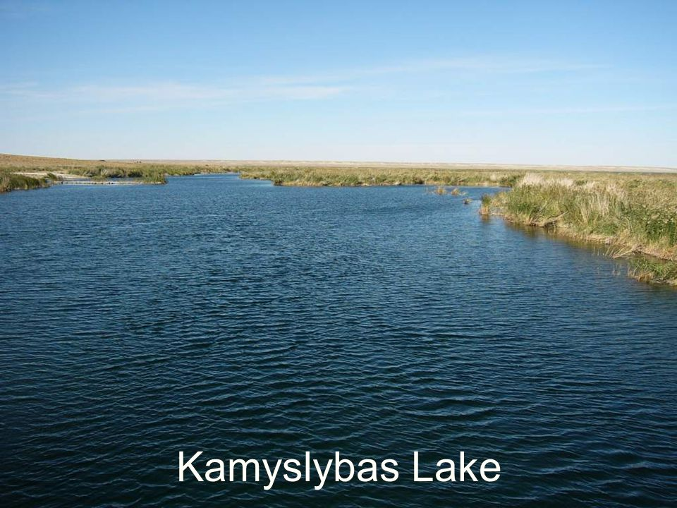 Kamyslybas Lake