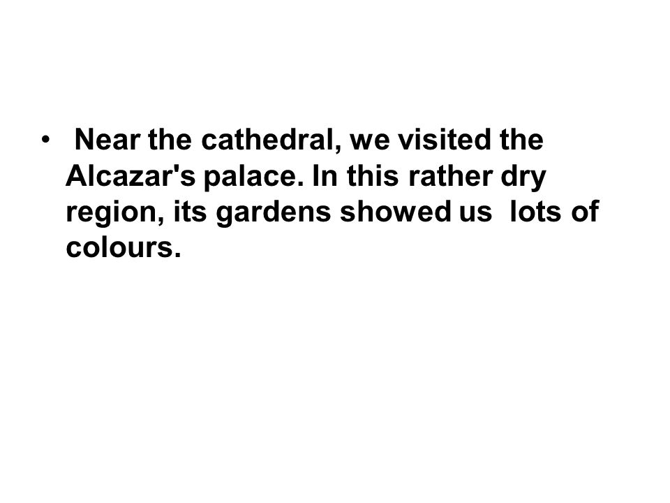 Near the cathedral, we visited the Alcazar's palace. In this rather dry region, its gardens showed us lots of colours.