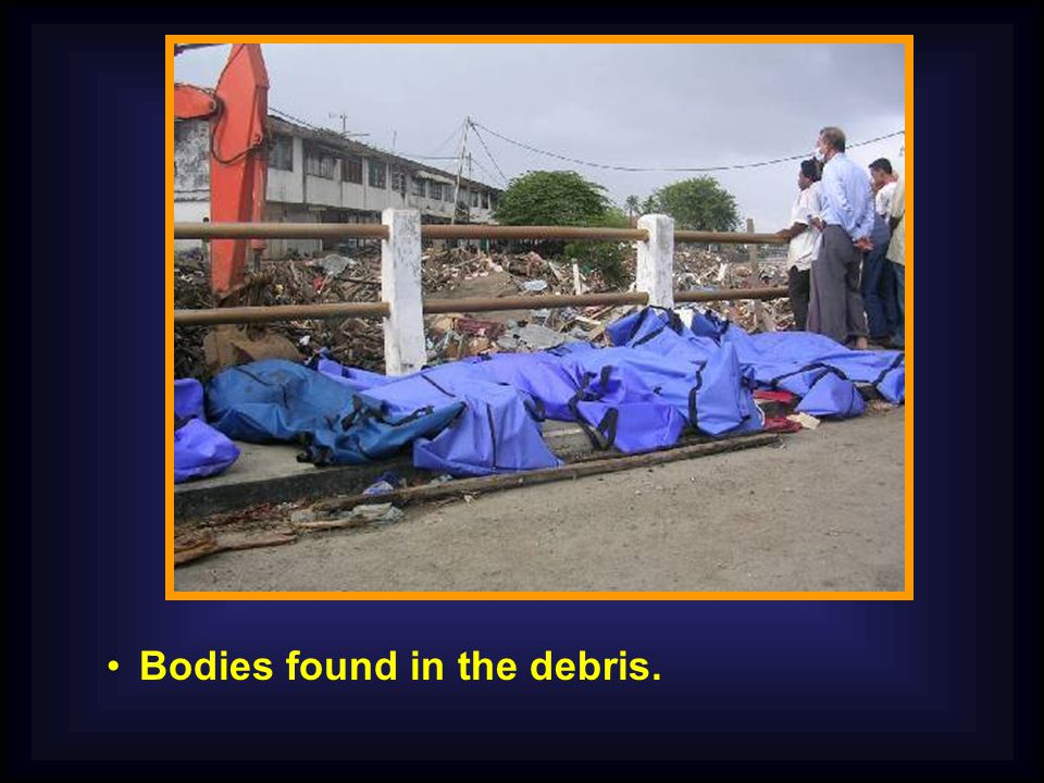 Bodies found in the debris.