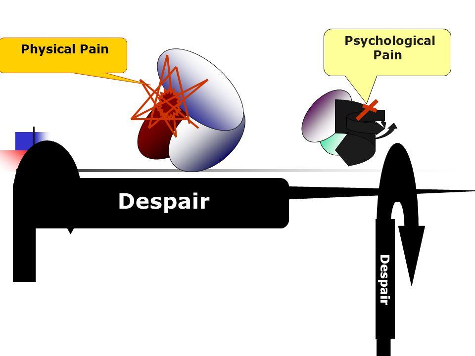 Psychological Pain Physical Pain Despair. etc Despair