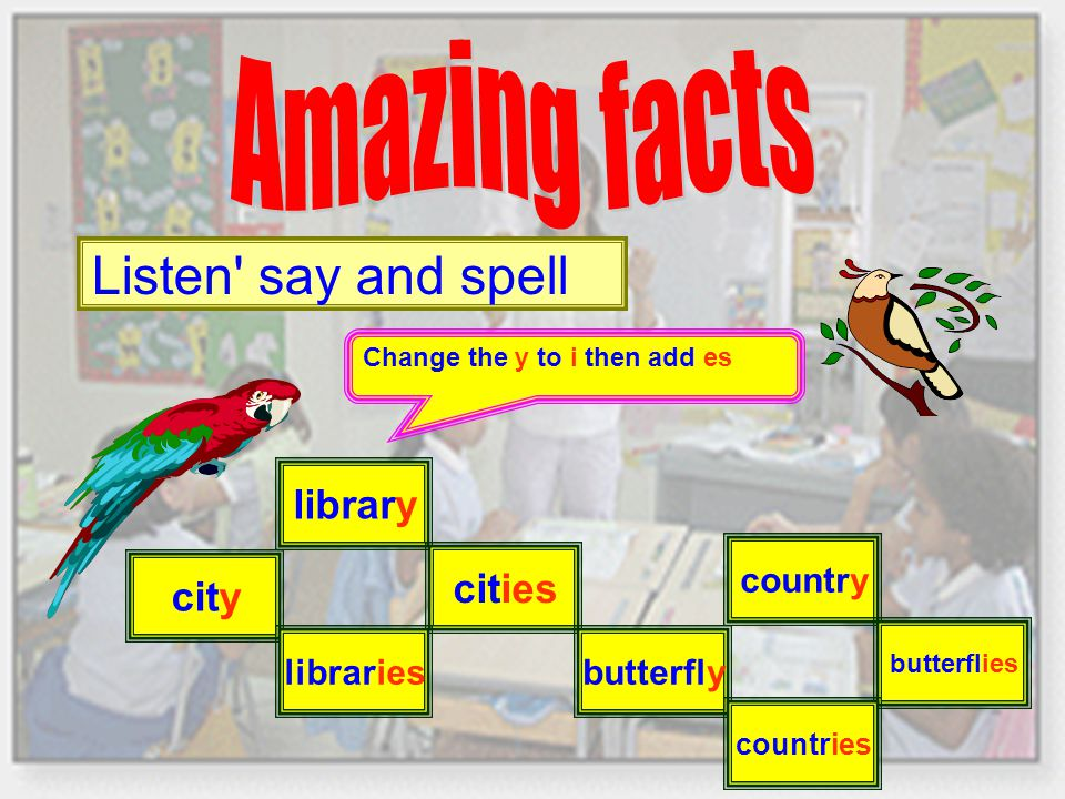 Listen say and spell Change the y to i then add es library cities butterfly country butterflies city libraries countries
