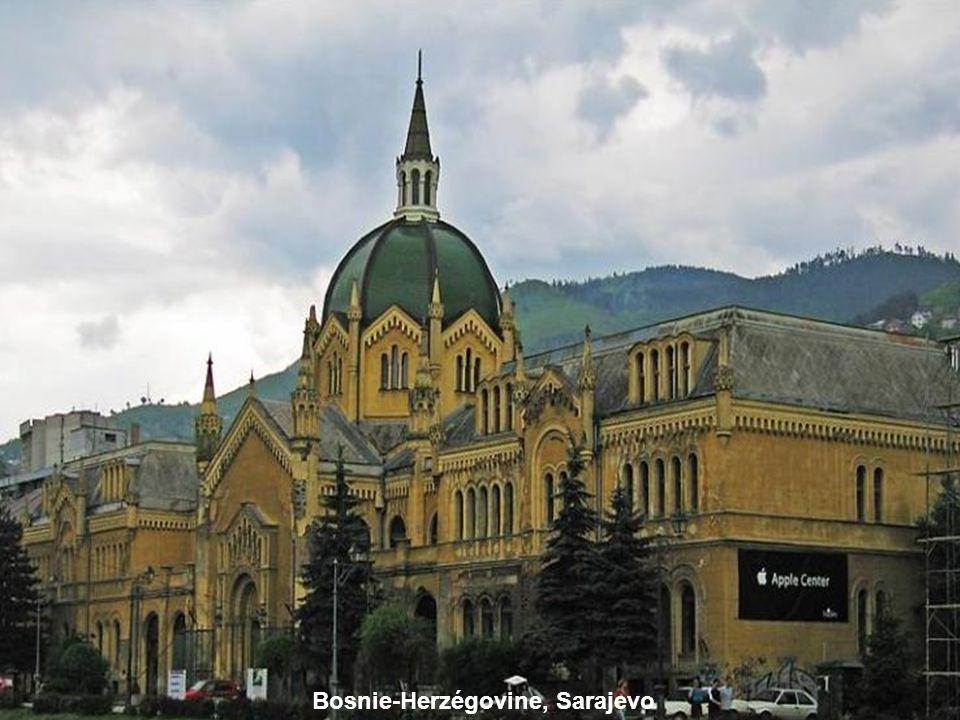 Sarajevo Library