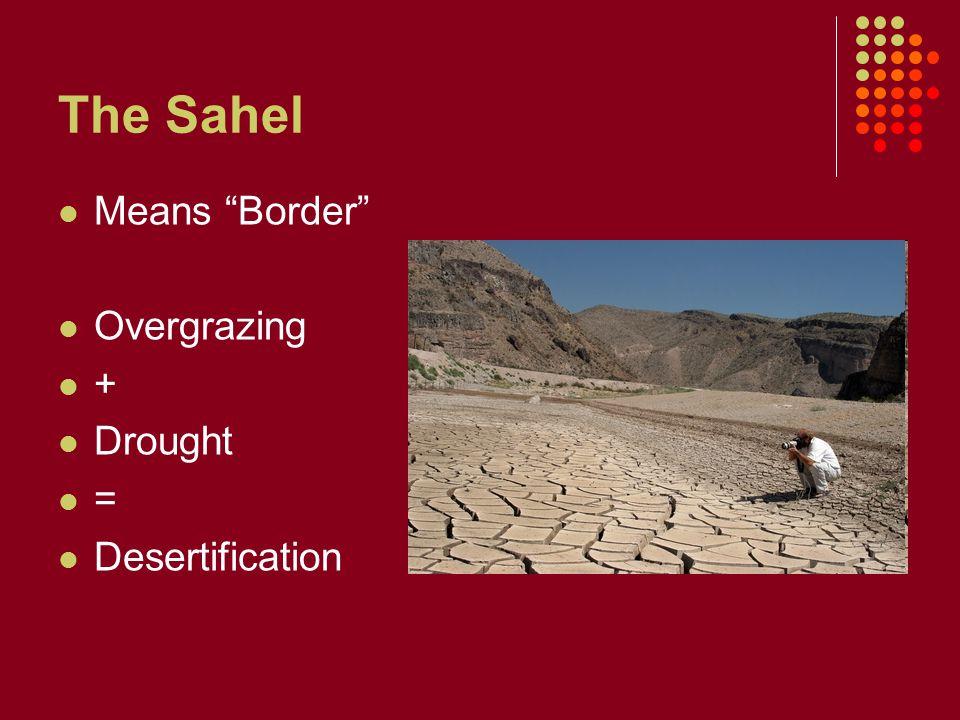 Empires of the Sahel Ghana Gold, Ivory, Salt Trade Mali Mansa Musa Timbuktu Songhai