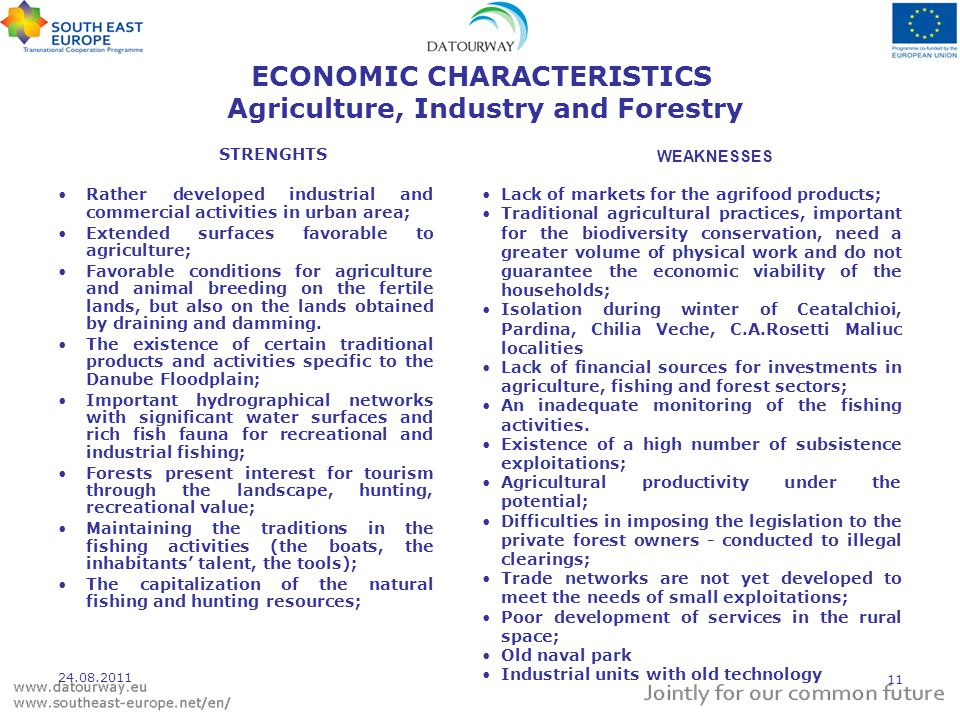 ECONOMIC CHARACTERISTICS Agriculture, Industry and Forestry STRENGHTS Rather developed industrial and commercial activities in urban area; Extended surfaces favorable to agriculture; Favorable conditions for agriculture and animal breeding on the fertile lands, but also on the lands obtained by draining and damming.
