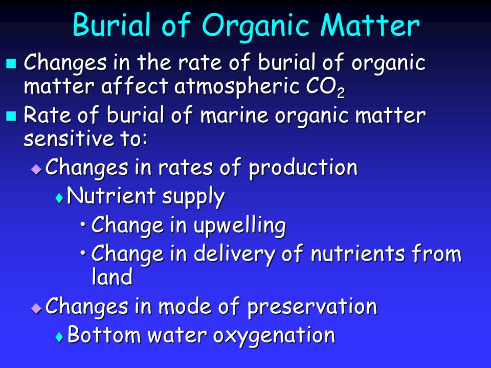 Burial of Organic Matter Changes in the rate of burial of organic matter affect atmospheric CO 2 Changes in the rate of burial of organic matter affect atmospheric CO 2 Rate of burial of marine organic matter sensitive to: Rate of burial of marine organic matter sensitive to:  Changes in rates of production  Nutrient supply Change in upwellingChange in upwelling Change in delivery of nutrients from landChange in delivery of nutrients from land  Changes in mode of preservation  Bottom water oxygenation