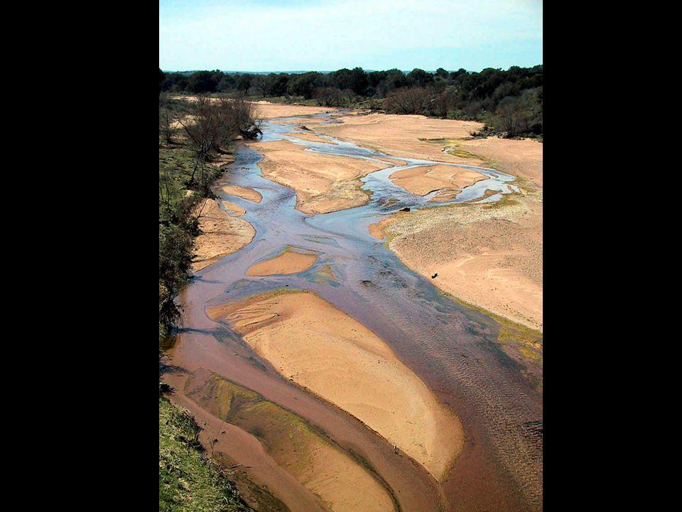 Image 43 – Sandy Creek