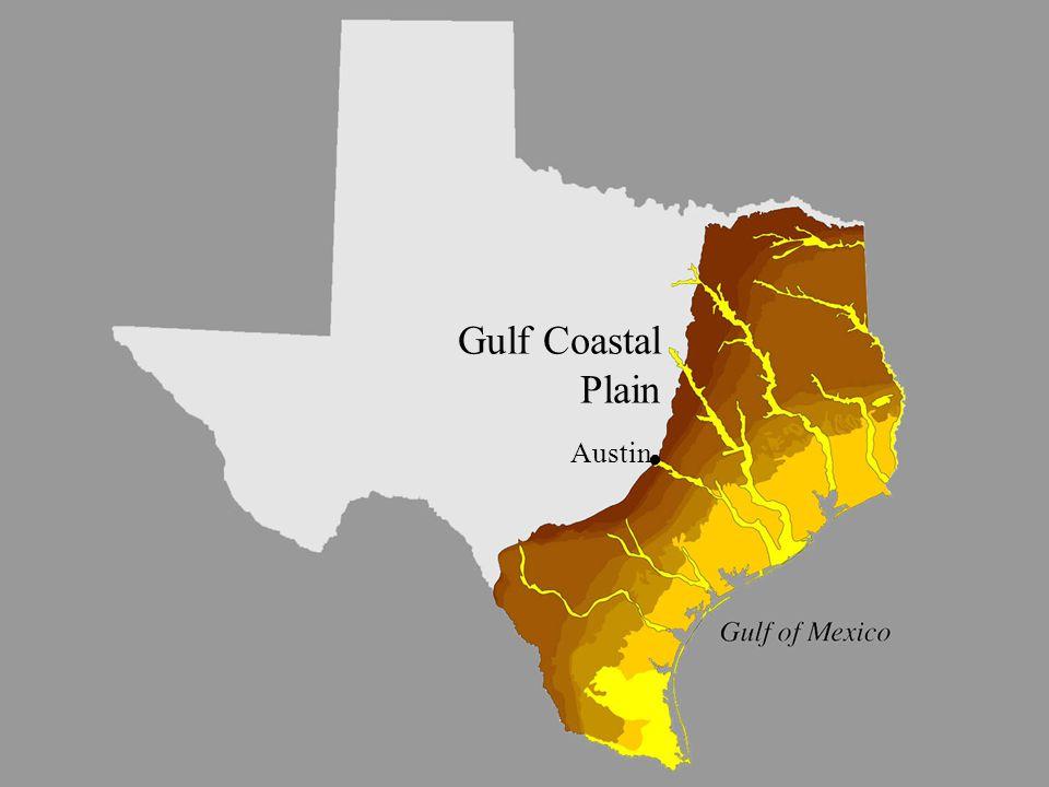 image 5 - Gulf Coastal Plain sub- province Gulf Coastal Plain Austin