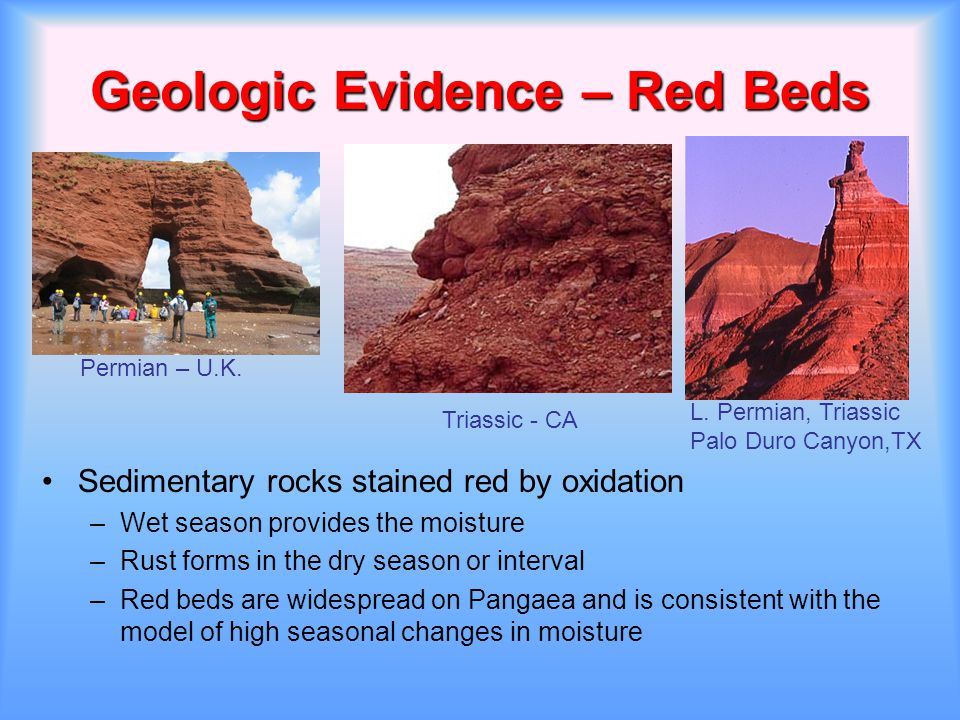 Geologic Evidence – Red Beds Sedimentary rocks stained red by oxidation –Wet season provides the moisture –Rust forms in the dry season or interval –R