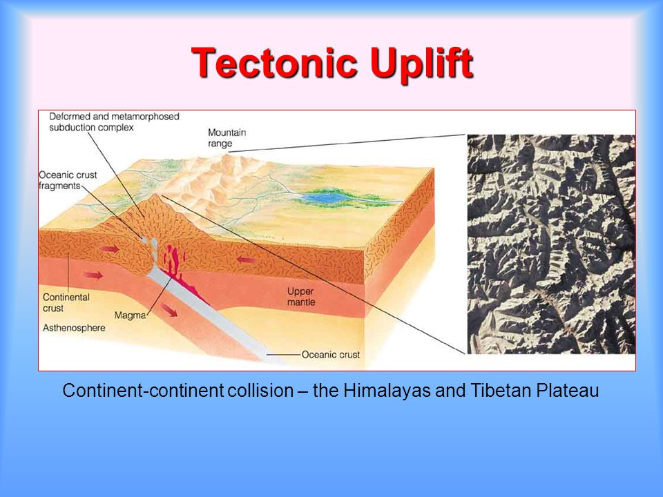Tectonic Uplift Continent-continent collision – the Himalayas and Tibetan Plateau