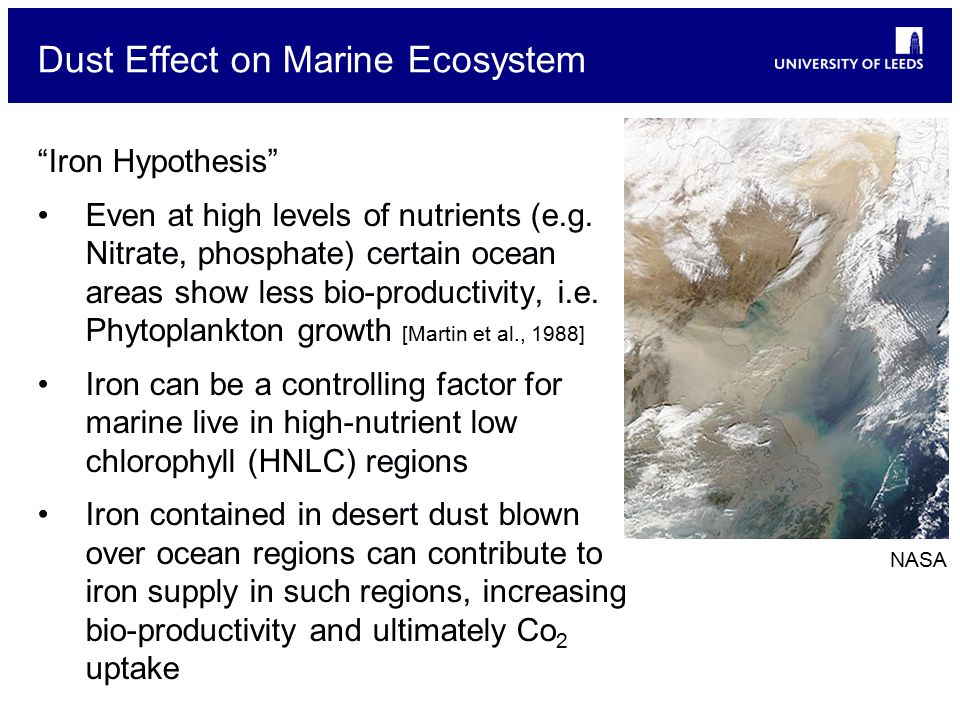 Dust Effect on Marine Ecosystem Iron Hypothesis Even at high levels of nutrients (e.g.