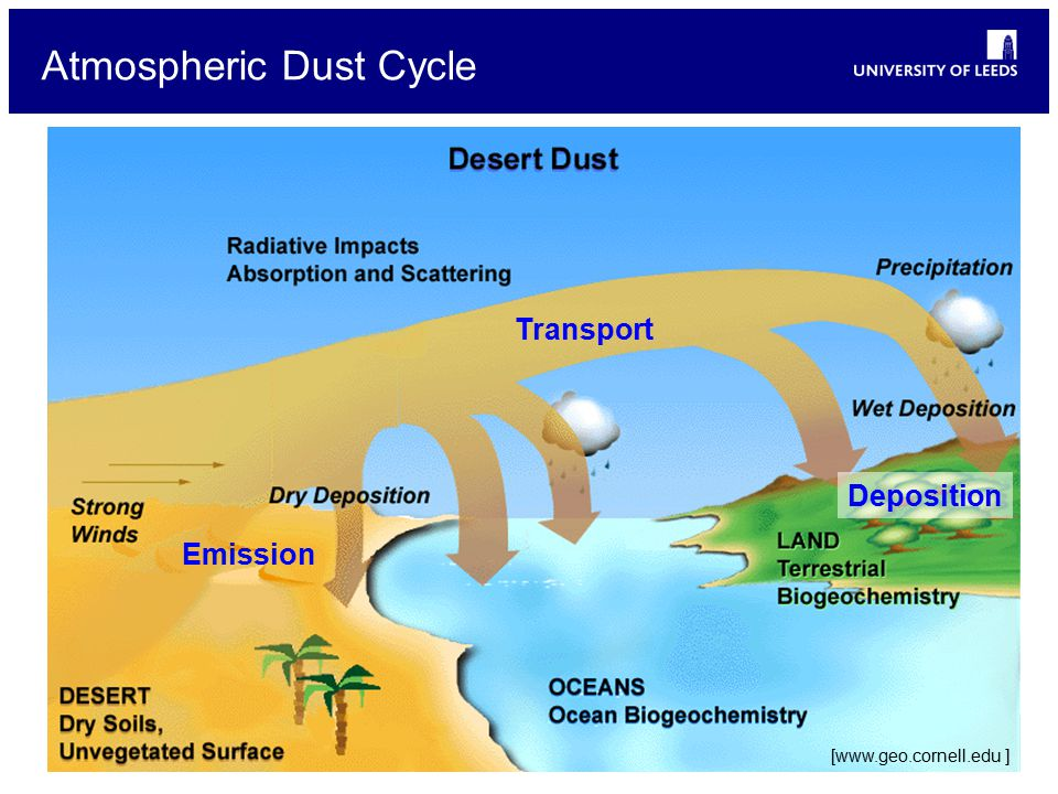 Atmospheric Dust Cycle [www.geo.cornell.edu ] Emission Transport Deposition