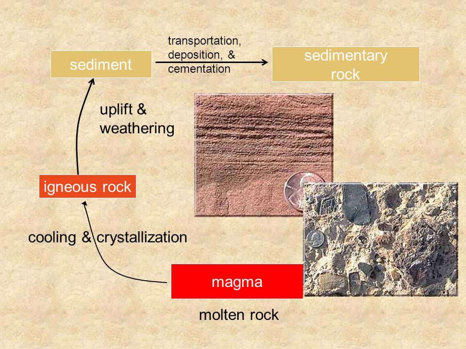 magma molten rock igneous rock uplift & weathering cooling & crystallization sediment sedimentary rock transportation, deposition, & cementation