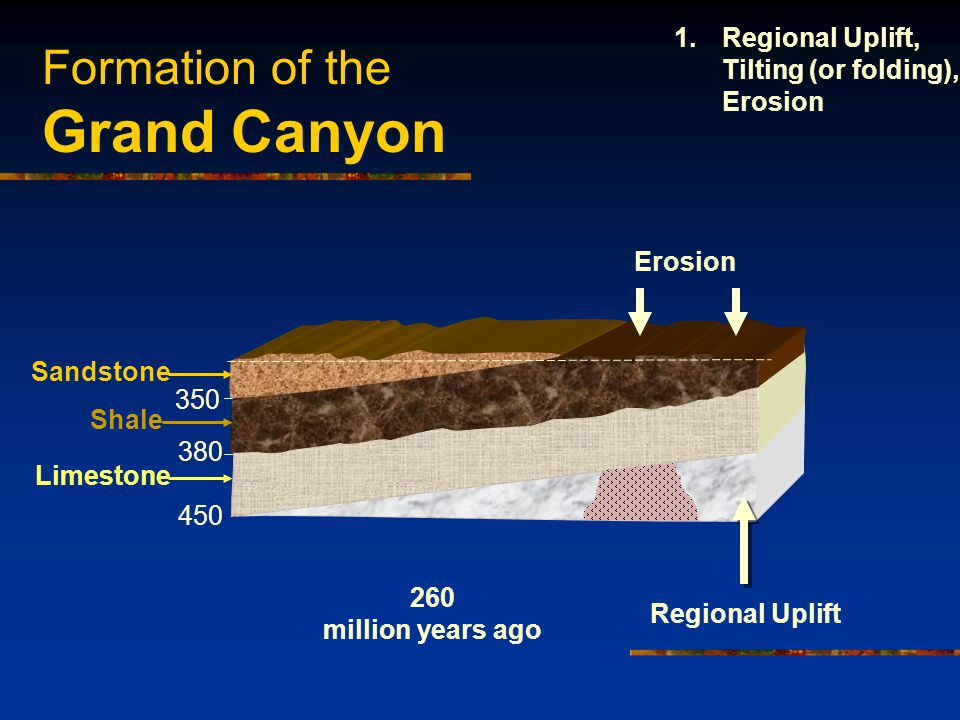 Formation of the Grand Canyon 450 380 350 Sandstone Shale Limestone Regional Uplift Erosion 260 million years ago 1.Regional Uplift, Tilting (or folding), Erosion