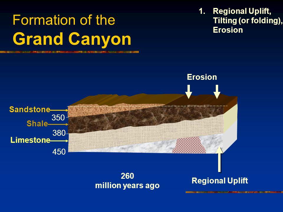 Formation of the Grand Canyon 450 380 350 Sandstone Shale Limestone Regional Uplift Erosion 260 million years ago 1.Regional Uplift, Tilting (or foldi