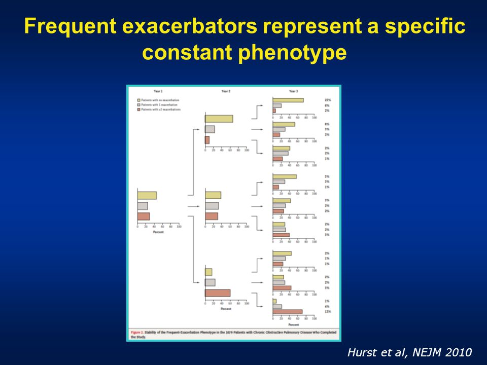 Frequent exacerbators represent a specific constant phenotype