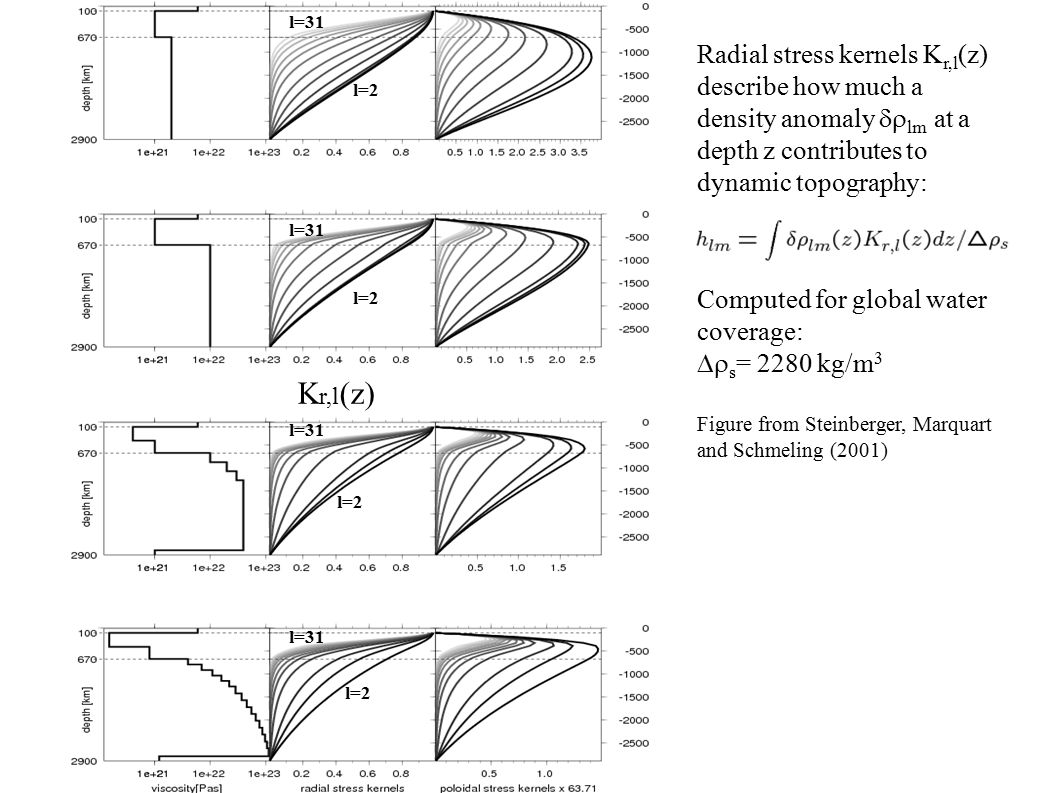 Radial stress kernels K r,l (z) describe how much a density anomaly  lm  at a depth z contributes to dynamic topography: Computed for global water