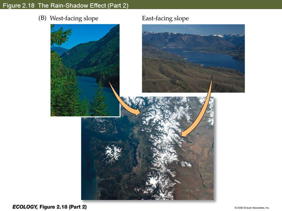 Figure 2.18 The Rain-Shadow Effect (Part 2)