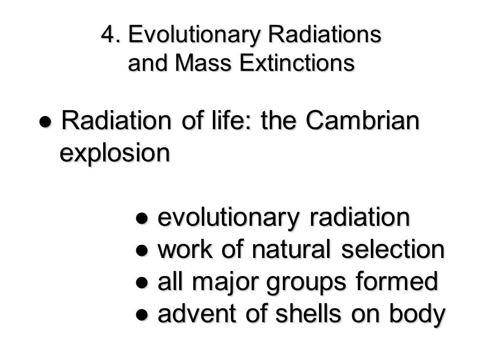 ● Radiation of life: the Cambrian explosion explosion ● evolutionary radiation ●work of natural selection ● work of natural selection ●all major groups formed ● all major groups formed ●advent of shells on body ● advent of shells on body 4.