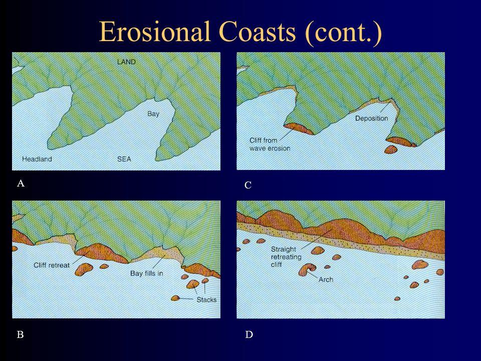 Erosional Coasts (cont.) A B C D