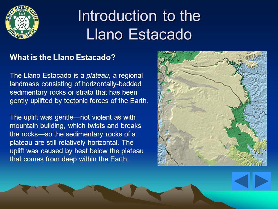 Introduction to the Llano Estacado What is the Llano Estacado.