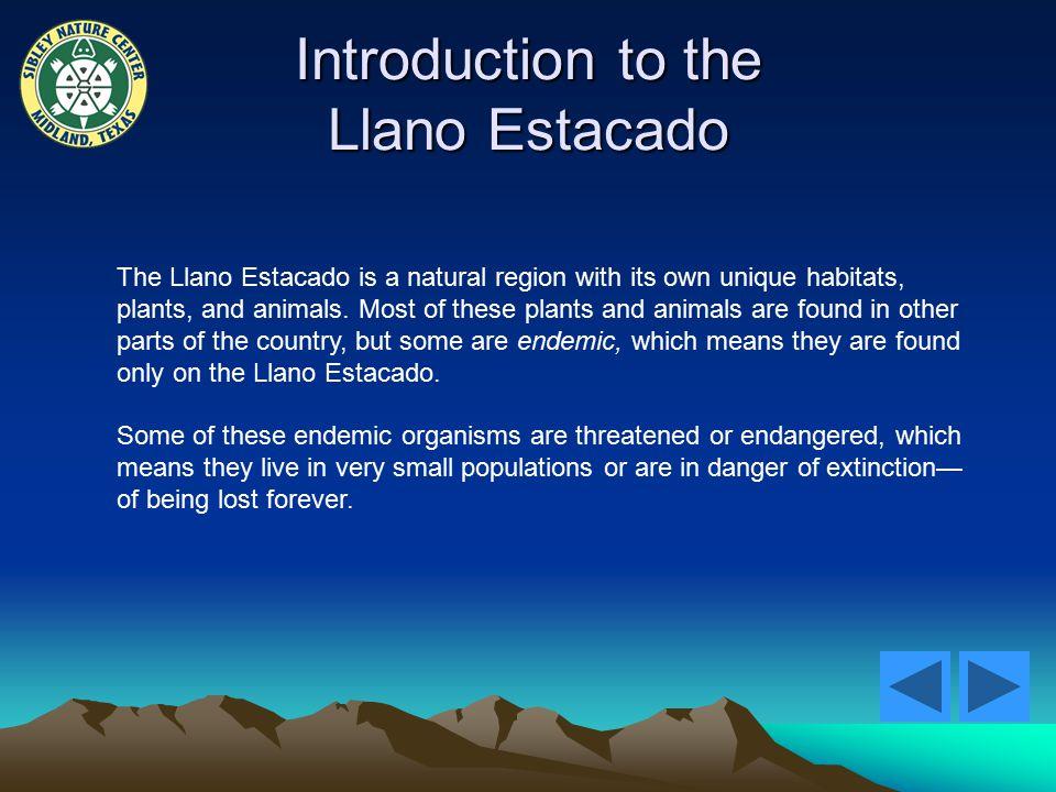 Introduction to the Llano Estacado The Llano Estacado is a natural region with its own unique habitats, plants, and animals.