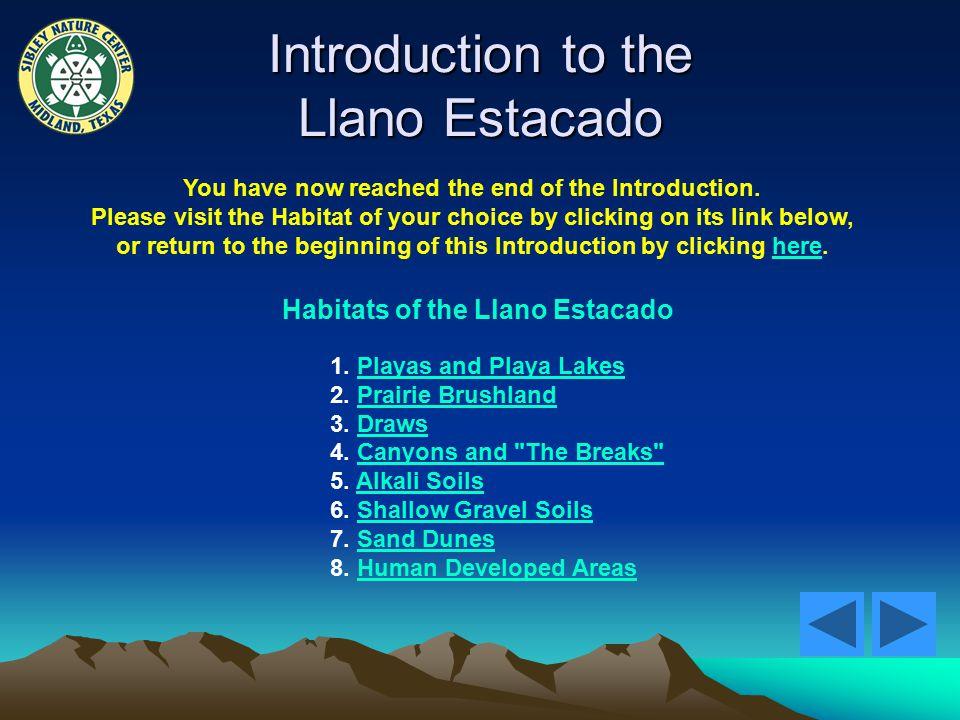 Introduction to the Llano Estacado Habitats of the Llano Estacado 1.