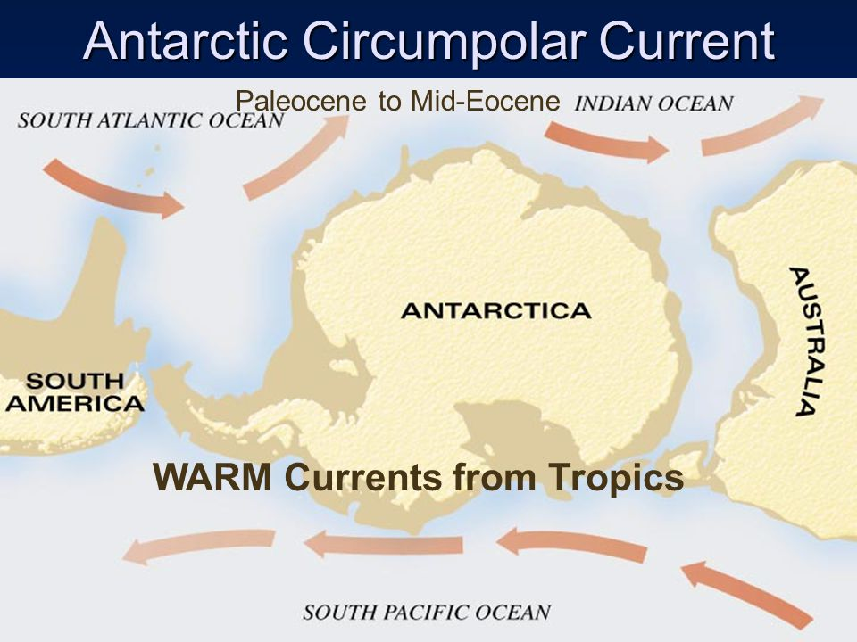 Antarctic Circumpolar Current Paleocene to Mid-Eocene WARM Currents from Tropics