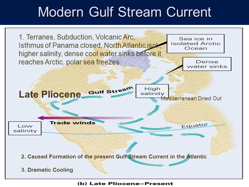 Modern Gulf Stream Current 1.