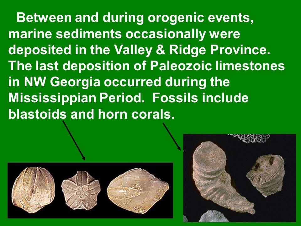 Between and during orogenic events, marine sediments occasionally were deposited in the Valley & Ridge Province.