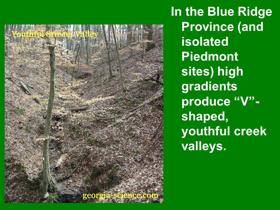 In the Blue Ridge Province (and isolated Piedmont sites) high gradients produce V - shaped, youthful creek valleys.