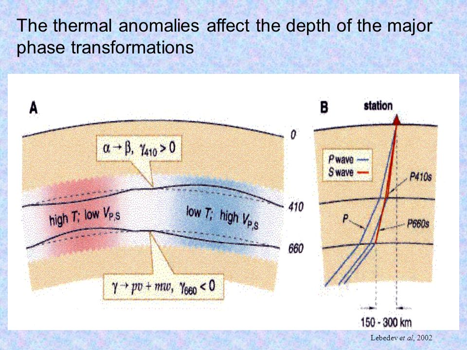 The thermal anomalies affect the depth of the major phase transformations Lebedev et al, 2002