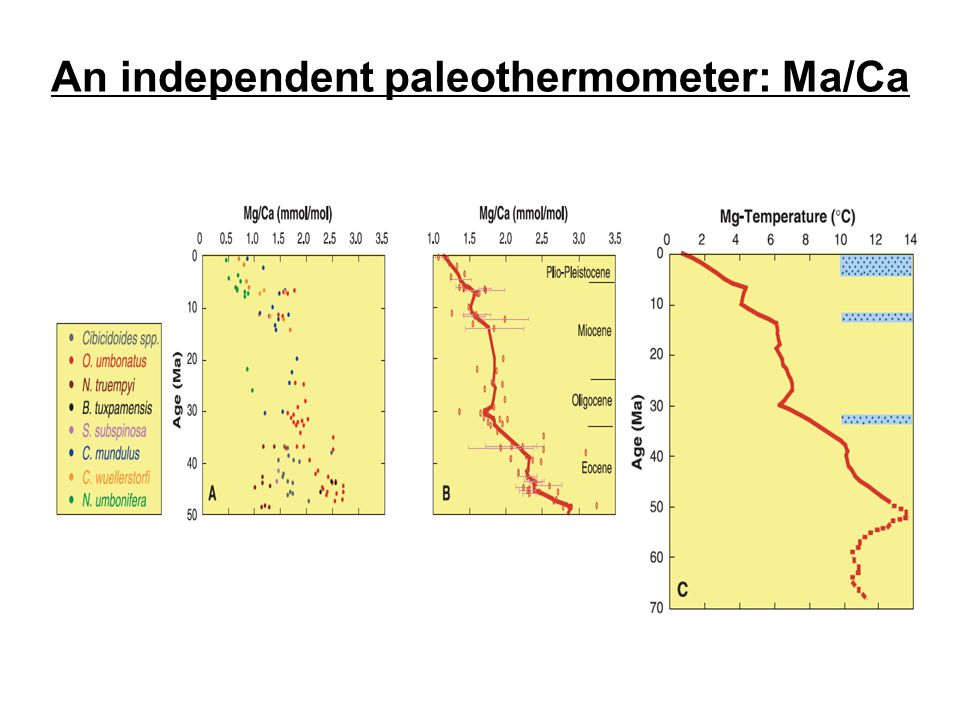 An independent paleothermometer: Ma/Ca