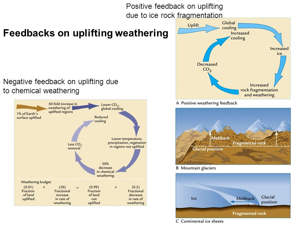 Negative feedback on uplifting due to chemical weathering Positive feedback on uplifting due to ice rock fragmentation Feedbacks on uplifting weatheri